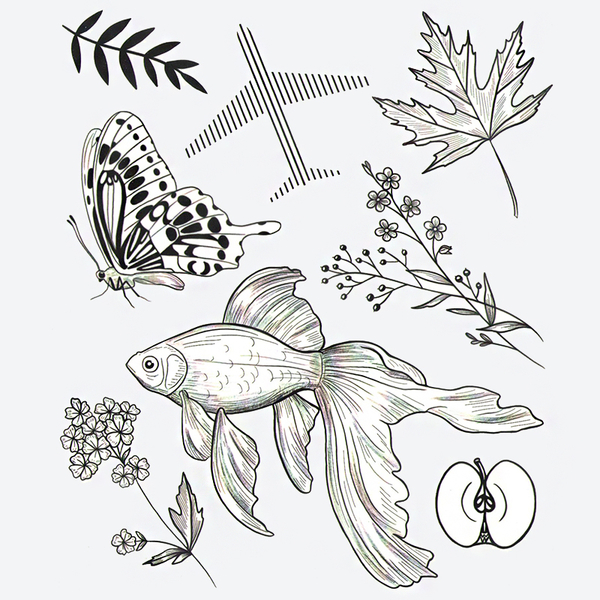 """Set of temporary tattoos """"Butterfly"""""""