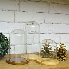 Glass cover on a stand