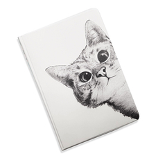 "5-in-1 Document Organizer ""Hey, Kitty!"""